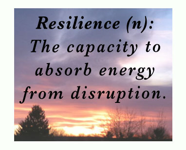 Resilience: the capacity to absorb energy from disruption.